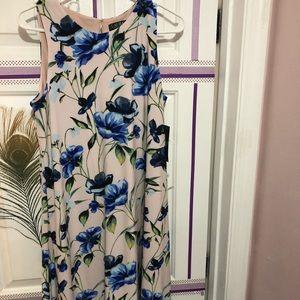 NWT Ralph Lauren floral dress